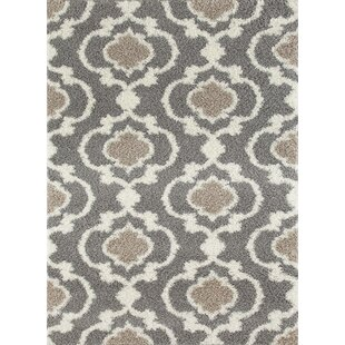 Hegwood Shag Gray Area Rug By Andover Mills