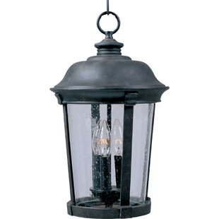 Nunnally 3-Light Outdoor Hanging Lantern