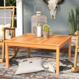 Antonia Solid + Manufactured Wood Coffee Table