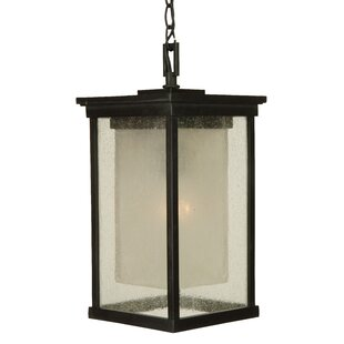 Charlton Home Oakhill 1 Light Outdoor Pendant