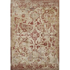 DeLorin Paprika Area Rug