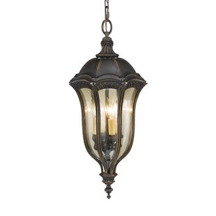 Affordable Gloucester 4-Light Outdoor Hanging Lantern By Astoria Grand