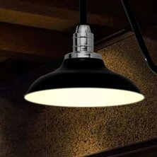Online Reviews Peony 1-Light Outdoor Barn Light By Cocoweb