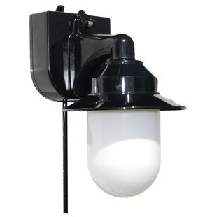 Savings 1-Light Outdoor Sconce By Polymer Products
