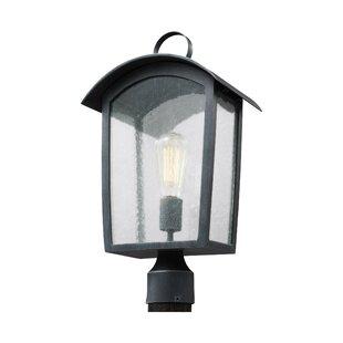 Lency 1-Light Lantern Head