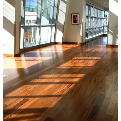 Imperial 4-3/4 Engineered Tigerwood Hardwood Flooring in American Hickory Albero Valley