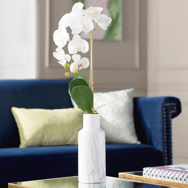 Phalaenopsis Orchid Floral Arrangements In Vase