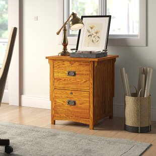 Limon 2-Drawer Vertical Filing Cabinet by Birch Lane™ Heritage
