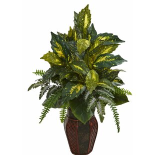 Mixed Floor Foliage Plant in Planter by World Menagerie