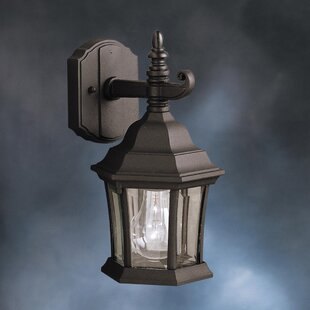 Astoria Grand Connan 1-Light Outdoor Wall Lantern
