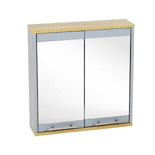 Thurso 54cm X 52cm Surface Mount Mirror Cabinet By 17 Stories
