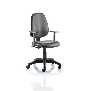 Ortis Ergonomic Office Chair By Brayden Studio