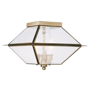 Darby Home Co Cynda 3-Light Flush Mount