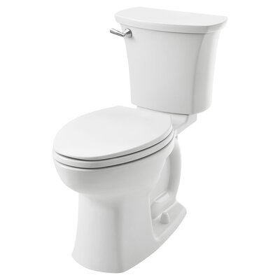 Tall Handicapped Toilets Wayfair