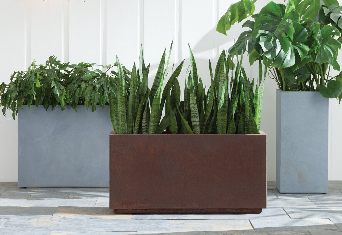 Veradek metallic series corten steel planter box reviews for Wayfair garden box