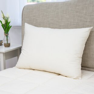 Alex Plush Polyester And Polyfill Bed Pillow (Set Of 2) by Alwyn Home Great Reviews