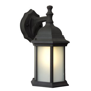 Frederica Traditional 1-Light Outdoor Wall Lantern by Breakwater Bay