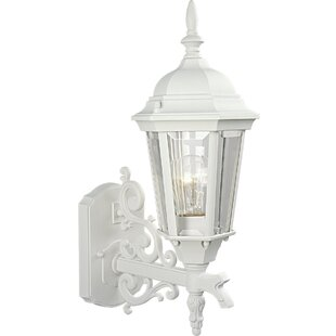 Triplehorn 1-Light Incandescent Outdoor Sconce by Alcott Hill Fresh