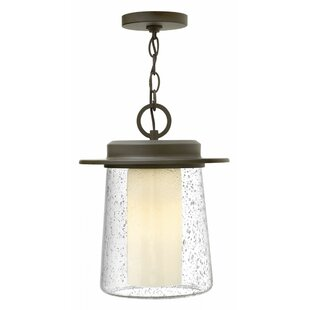 Inexpensive Riley 1-Light LED Outdoor Pendant By Hinkley Lighting