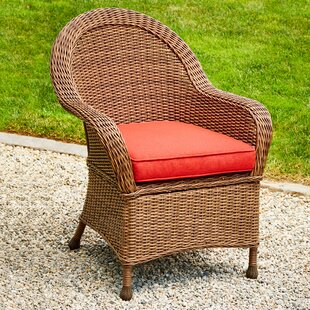 Acree Hacienda Patio Dining Chair with Cushion (Set of 2)