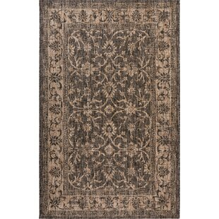 Haddenham Brown Indoor/Outdoor Area Rug