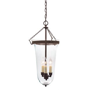 Brionna 3-Light Outdoor Pendant by Alcott Hill