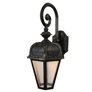 Flannigan 1-Light Outdoor Wall Lantern