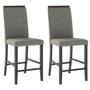 Red Barrel Studio Burgess Dinings Chair (Set of 2)