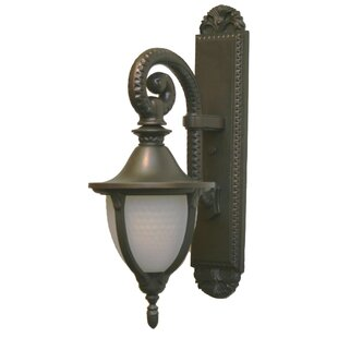 Phillipstown 1-Light Outdoor Wall Lantern by Alcott Hill