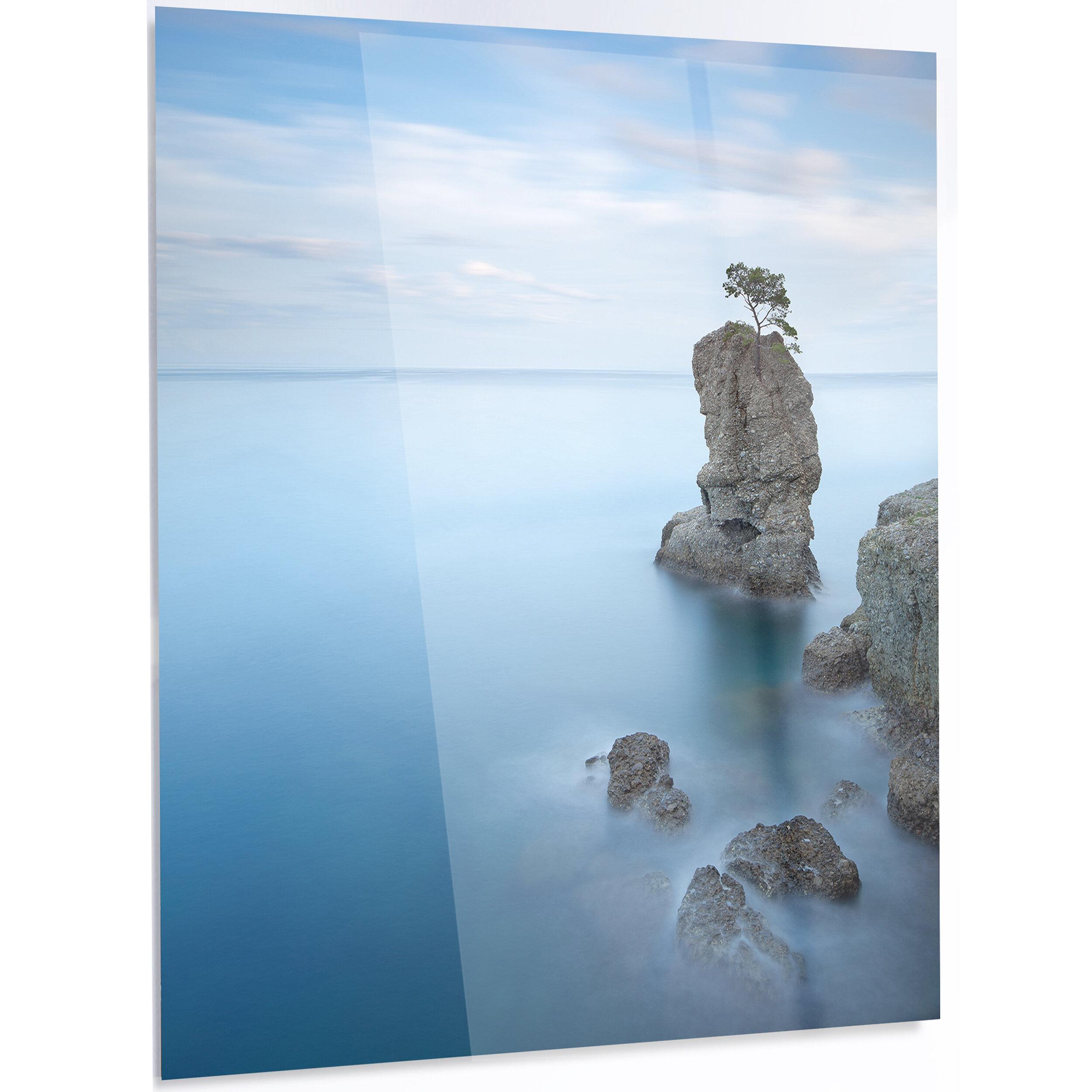 Designart Pine Tree Rock At Portofino Park Photographic Print On Metal Wayfair