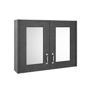 Stotler 79cm X 59.5cm Surface Mount Mirror Cabinet By Brayden Studio