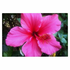 'Tropical Pink Hibiscus' Doormat