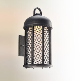 August Grove Schaffen Outdoor Sconce