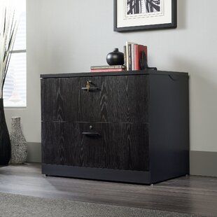 Castalia 2 Drawer Lateral Filing Cabinet by Red Barrel Studio