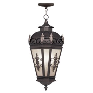 Astoria Grand Bedarra 3-Light Outdoor Pendant