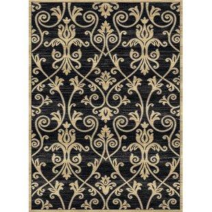 Bargain Audric Floral Black/Beige Area Rug ByDarby Home Co