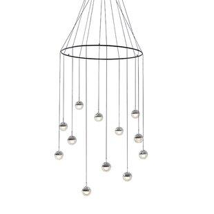 Dora 12-Light Cluster Pendant by Seed Design