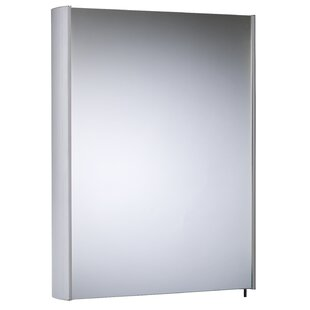 48.2cm X 70cm Surface Mount Mirror Cabinet By Symple Stuff