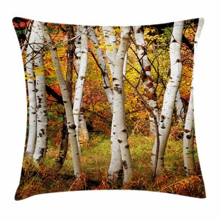 Fall Decor Birch Trees Square Pillow Cover by Ambesonne Best Design
