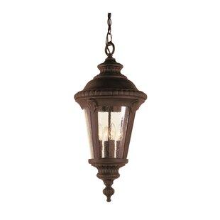 Fleur De Lis Living Hinckley 3-Light Hanging Lantern