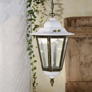 Review Nelle 1-Light Outdoor Hanging Lantern