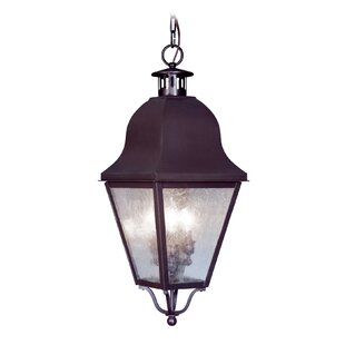 Alcott Hill Goodhue 3-Light Ou..