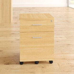 Verde 2 Drawer Filing Cabinet By 17 Stories
