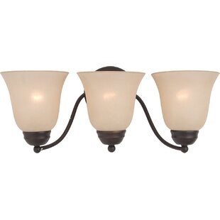 Birdsall 3-Light Vanity Li..