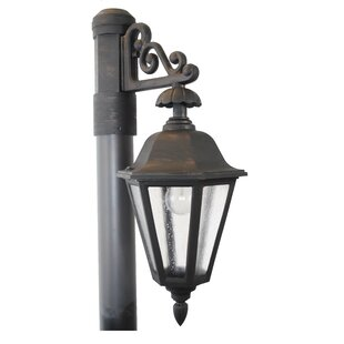 Fiorini 1-Light Lantern Head by Darby Home Co