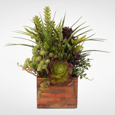 17 Stories Artificial Desktop Succulent Variety Plant in Planter