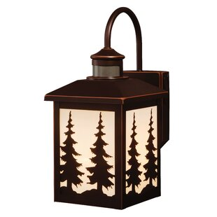 Loon Peak Jennings 1-Light Outdoor Wall Lantern