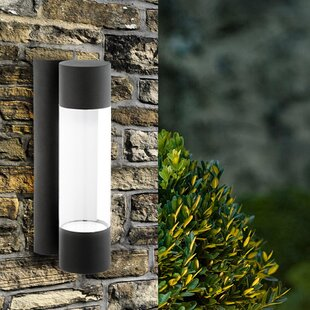 Leiker 2-Light LED Outdoor Sconce by Latitude Run