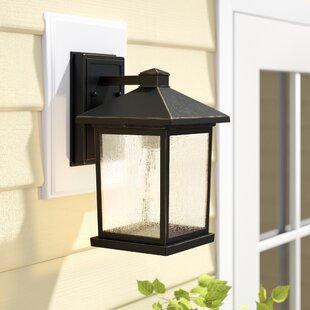 Lovette Coastal 1-Light Outdoor Wall Lantern