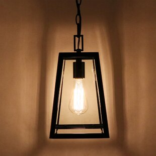 Jamel 1-Light Outdoor Hanging Lantern